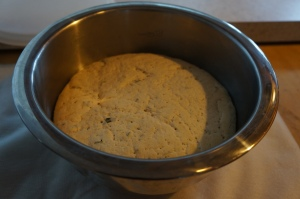 Food - Pizza Dough 5