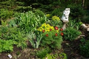 Plants - Garden View 1