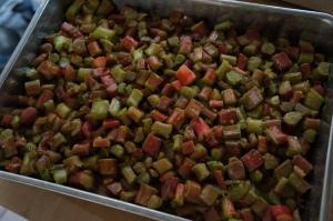 Food - Rhubarb Squares 2