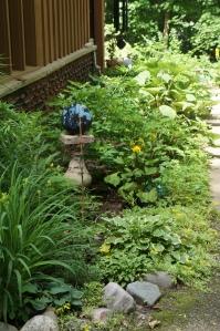 Plants - Garden 1