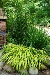 Plants - Garden 2