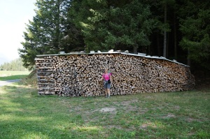 Travel - TMB Swiss Woodpile