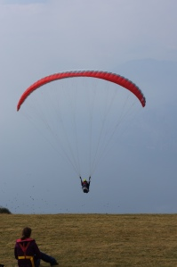 Travel - Paragliding 2