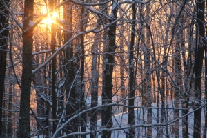 Photography - Winter Sunrise