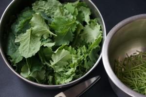 Baby Kale Harvest